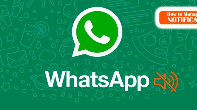 How to Manage your whatsapp notifications
